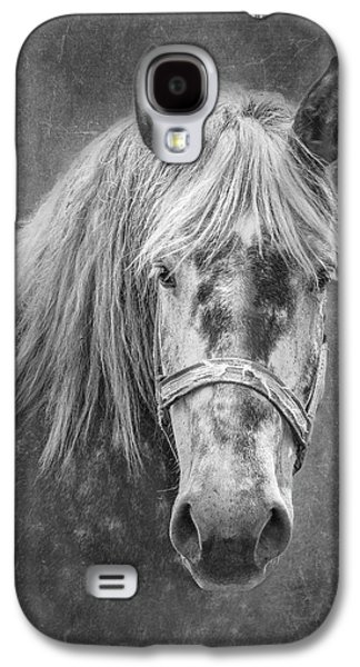 Portrait Of A Horse Galaxy S4 Case