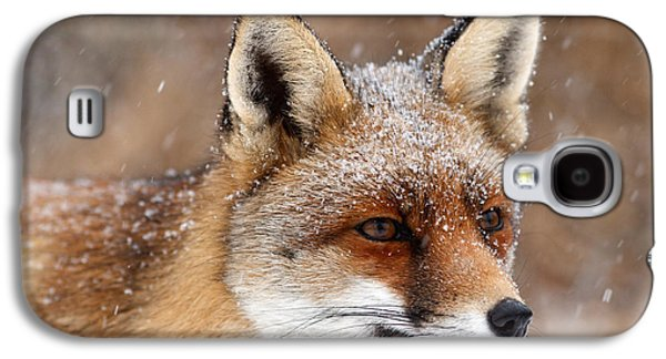 Portrait Of A Red Fox In A Snow Storm Galaxy S4 Case