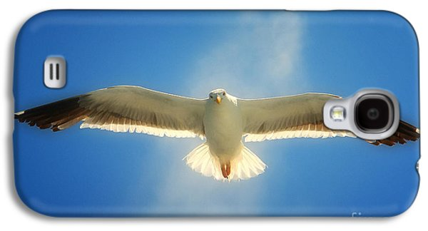 Portrait Of A Seagull Galaxy S4 Case by John A Rodriguez