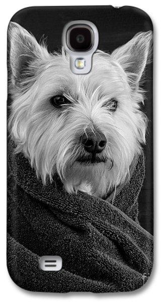 Portrait Of A Westie Dog 8x10 Ratio Galaxy S4 Case