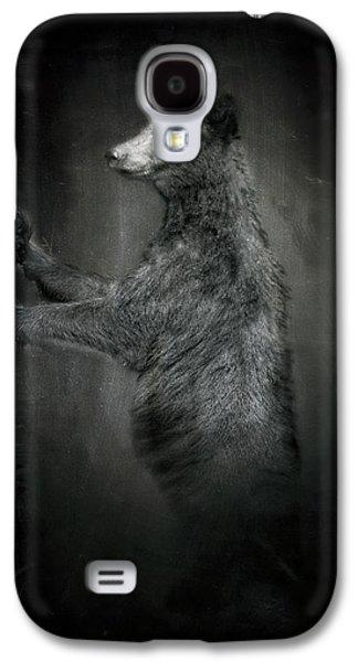 Portrait Of Black Bear Resting Against Tree Galaxy S4 Case