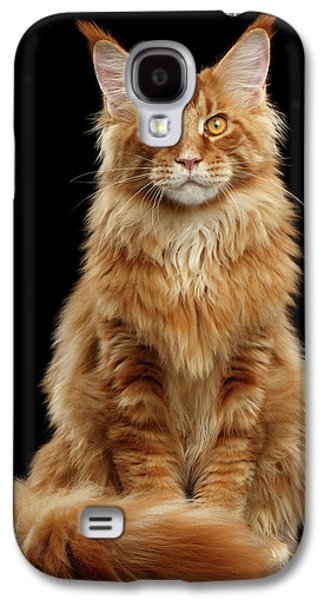Cat Galaxy S4 Case - Portrait Of Ginger Maine Coon Cat Isolated On Black Background by Sergey Taran
