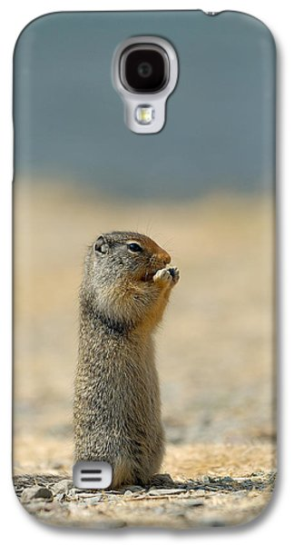 Prairie Dog Galaxy S4 Case by Sebastian Musial