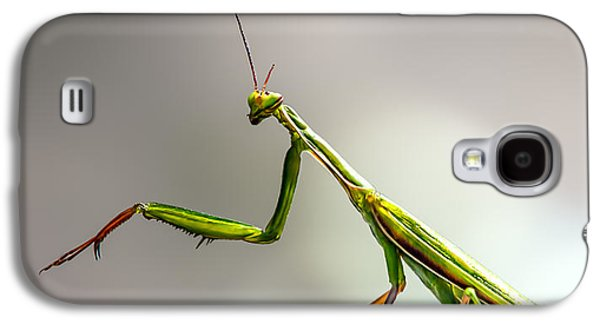 Praying Mantis  Galaxy S4 Case by Bob Orsillo
