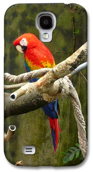 Pretty Bird Galaxy S4 Case
