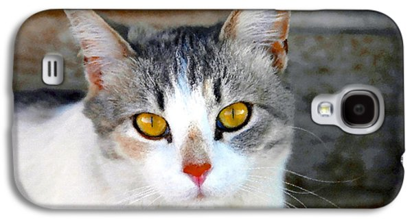 Pretty Kitty Galaxy S4 Case by David Lee Thompson
