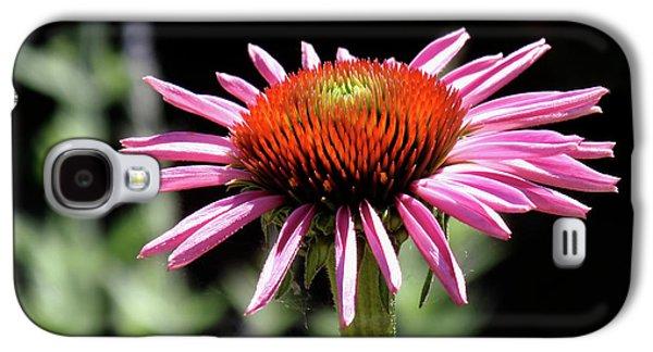 Pretty Pink Coneflower Galaxy S4 Case by Rona Black
