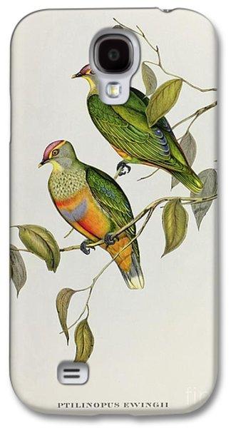 Lovebird Galaxy S4 Case - Ptilinopus Ewingii by John Gould