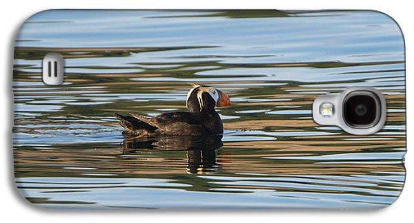 Puffin Reflected Galaxy S4 Case by Mike Dawson
