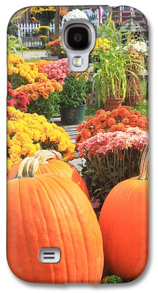 Pumpkins And Mums In Farmstand Galaxy S4 Case by John Burk