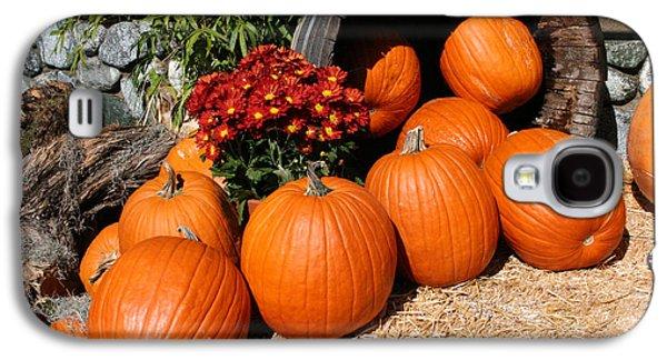 Pumpkin Galaxy S4 Case - Pumpkins- Photograph By Linda Woods by Linda Woods