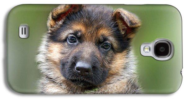Puppy Portrait Galaxy S4 Case by Sandy Keeton