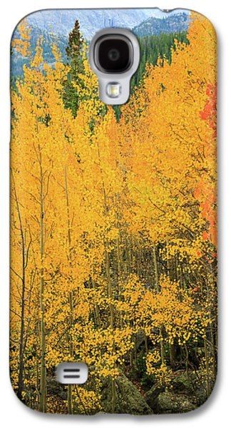 Galaxy S4 Case featuring the photograph Pure Gold by David Chandler