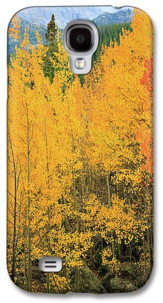 Pure Gold Galaxy S4 Case by David Chandler
