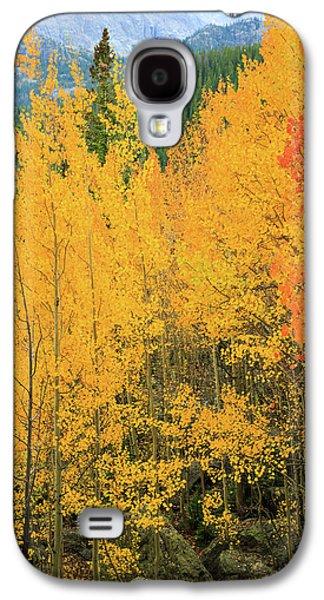 Pure Gold Galaxy S4 Case