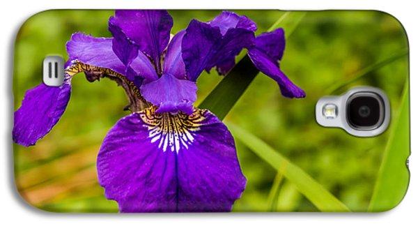 Purple Beauty Galaxy S4 Case