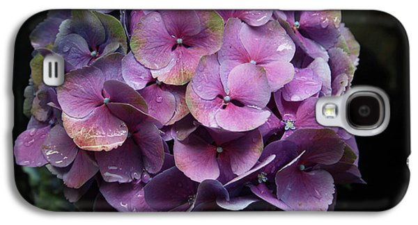 Purple Hydrangea- By Linda Woods Galaxy S4 Case by Linda Woods