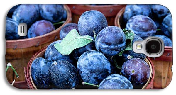 Purple Plums Galaxy S4 Case by Teri Virbickis