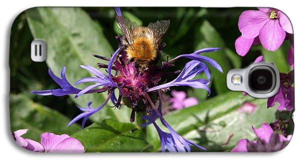 Purple Pollination Galaxy S4 Case by Richard Brookes
