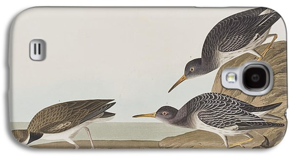 Purple Sandpiper Galaxy S4 Case by John James Audubon