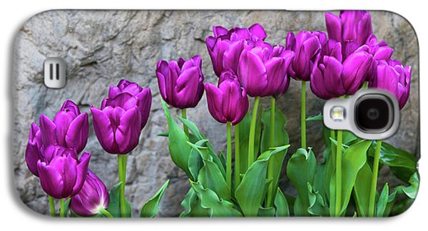 Purple Tulips Galaxy S4 Case by Tom Mc Nemar