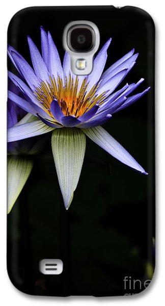 Purple Waterlily Galaxy S4 Case by Avalon Fine Art Photography