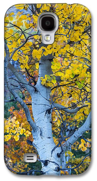 Quaking Aspen Galaxy S4 Case