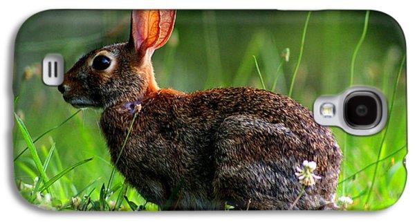 Rabbit In A Meadow Galaxy S4 Case