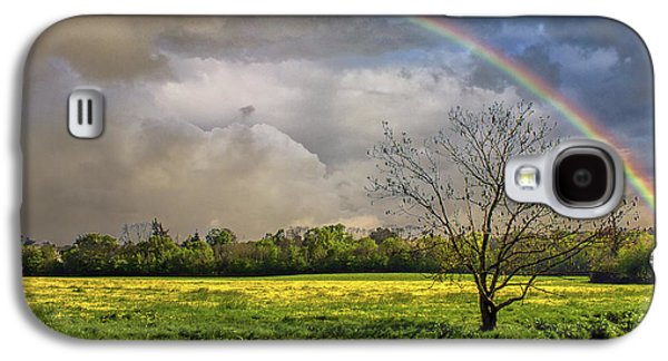 Rainbow Field Galaxy S4 Case