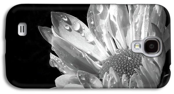 Raindrops On Daisy Black And White Galaxy S4 Case