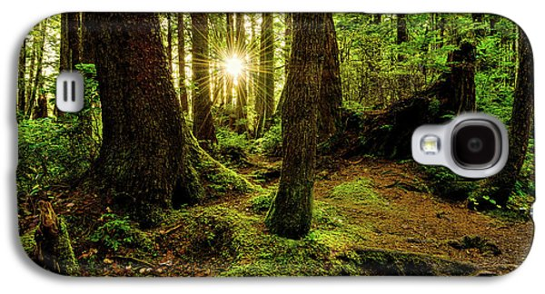 Rainforest Path Galaxy S4 Case by Chad Dutson