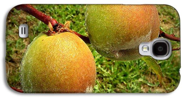 Rainy Day Peaches Galaxy S4 Case by Joyce Dickens