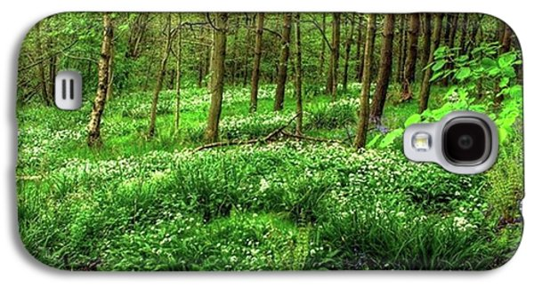 Amazing Galaxy S4 Case - Ramsons And Bluebells, Bentley Woods by John Edwards
