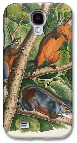 Red Bellied Squirrel  Galaxy S4 Case by John James Audubon