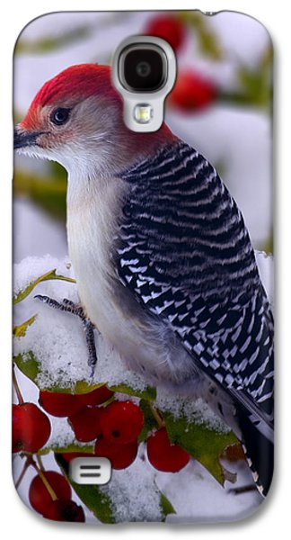 Red Bellied Woodpecker Galaxy S4 Case