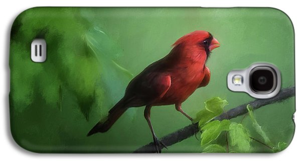 Red Bird On A Hot Day Galaxy S4 Case by Lois Bryan
