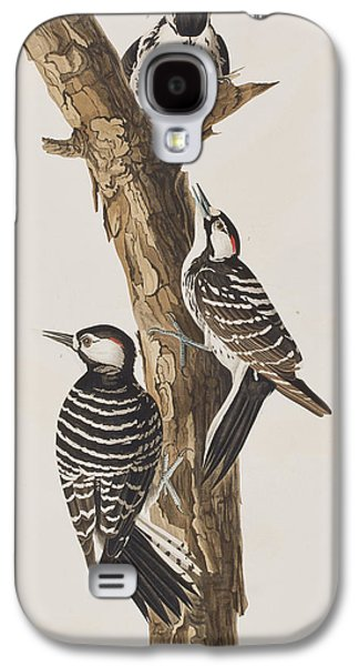 Red-cockaded Woodpecker Galaxy S4 Case by John James Audubon