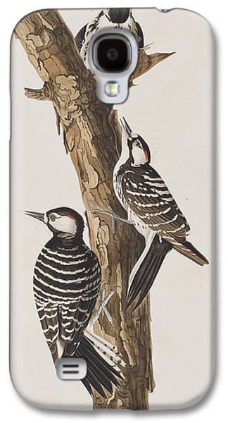 Red-cockaded Woodpecker Galaxy S4 Case