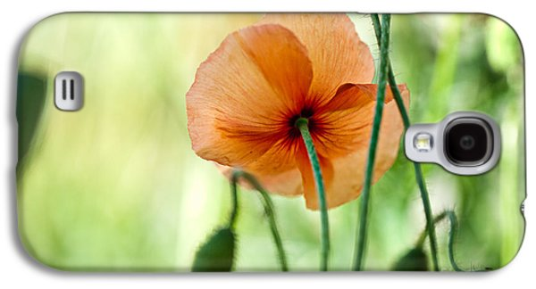Red Corn Poppy Flowers 02 Galaxy S4 Case by Nailia Schwarz