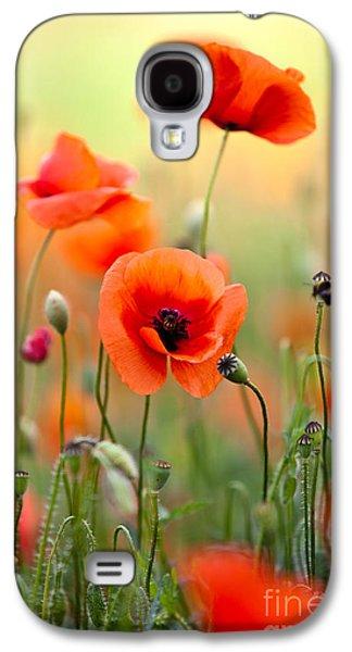 Botanical Galaxy S4 Cases - Red Corn Poppy Flowers 06 Galaxy S4 Case by Nailia Schwarz