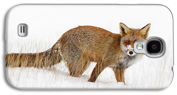 Red Fox In A Snow Covered Scene Galaxy S4 Case by Roeselien Raimond