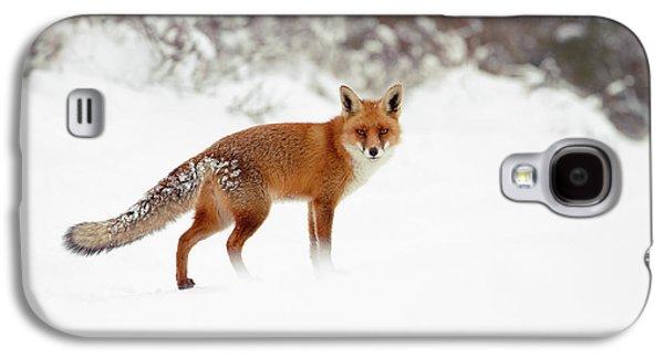 Red Fox In Winter Wonderland Galaxy S4 Case