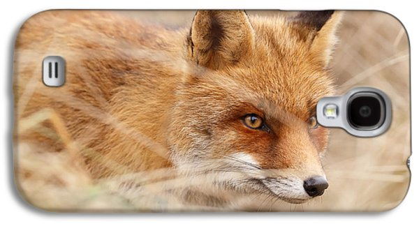 Red Fox On The Hunt Galaxy S4 Case by Roeselien Raimond