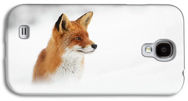 Fox Galaxy S4 Case - Red Fox Out Of The Blue by Roeselien Raimond