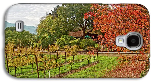 Red, Gold And Green In Yountville Vineyard In Napa Valley-california  Galaxy S4 Case by Ruth Hager