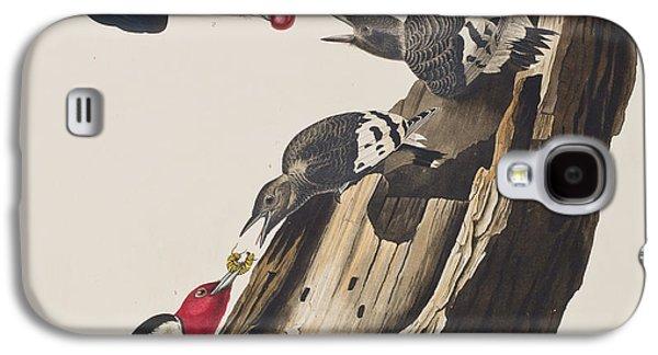 Feeding Young Galaxy S4 Case - Red Headed Woodpecker by John James Audubon