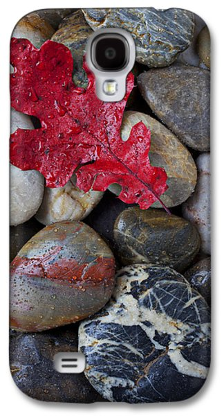 Red Leaf Wet Stones Galaxy S4 Case