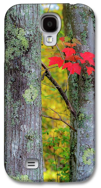 Red Leaves Galaxy S4 Case