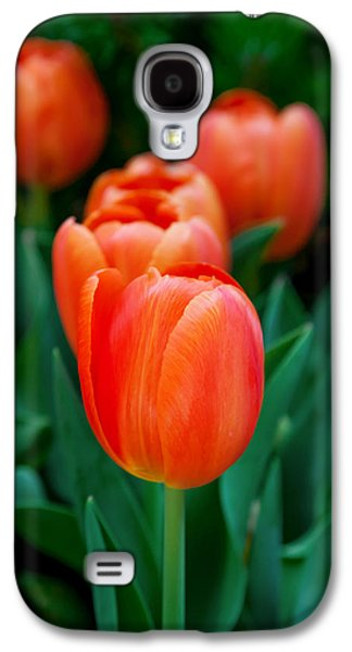 Featured Images Galaxy S4 Case - Red Tulips by Az Jackson