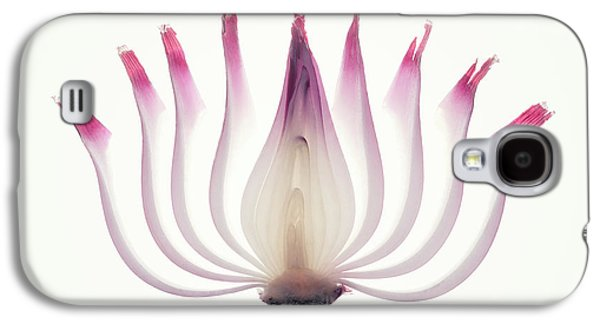 Layers Galaxy S4 Case - Red Onion Translucent Peeled Layers by Johan Swanepoel
